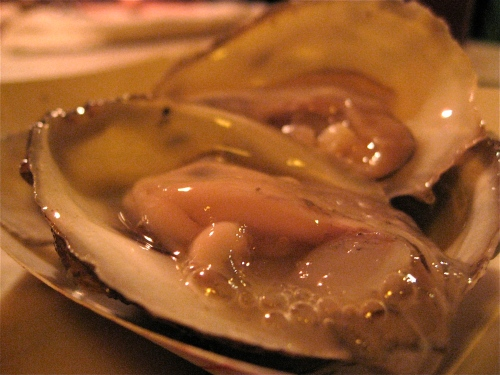 Local Naked Cowboy Oysters from the Long Island Sound