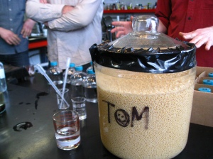 Tom, Our Fermented Friend
