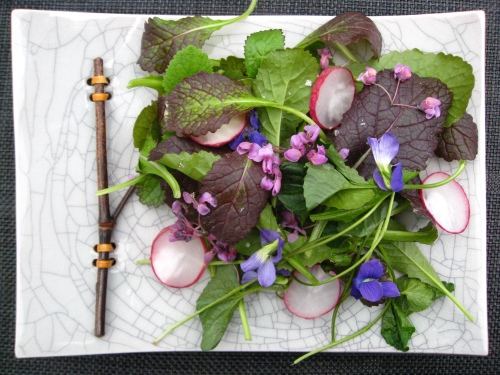 violet-radish spring salad with secret dressing