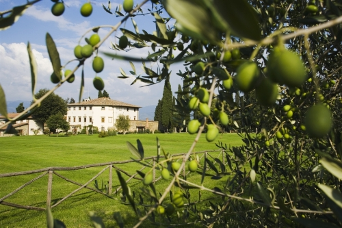 ALL-INCLUSIVE TUSCAN COOKING GETAWAY WITH CHEF SAM HAYWARD AND WRITER NANCY HARMON JENKINS